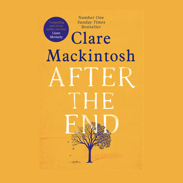 BOOK REVIEW: CLARE MACKINTOSH – AFTER THE END