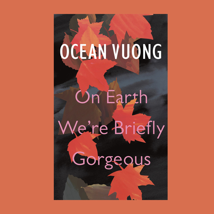 BOOK REVIEW: OCEAN VOUNG –  ON EARTH WE'RE BRIEFLY GORGEOUS