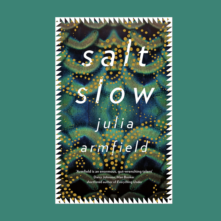 BOOK REVIEW: JULIA ARMFIELD – SALT SLOW