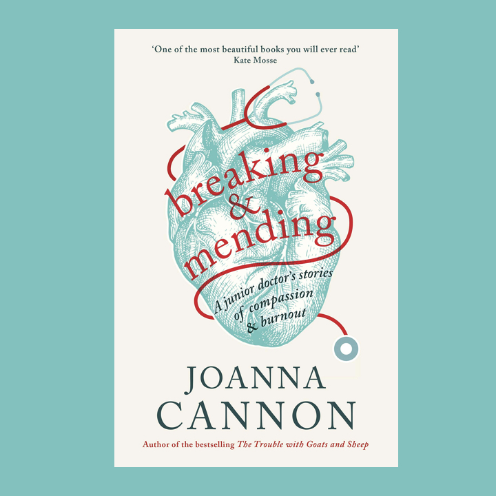 BOOK REVIEW: JOANNA CANNON – BREAKING & MENDING