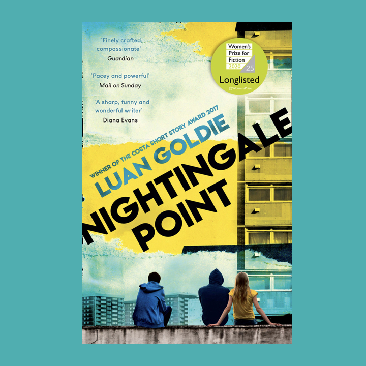BOOK REVIEW: LUAN GOLDIE – NIGHTINGALE POINT