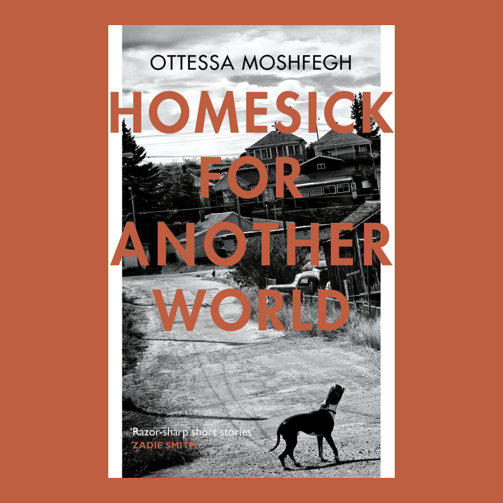 BOOK REVIEW: OTTESSA MOSHFEGH – HOMESICK FOR ANOTHER WORLD