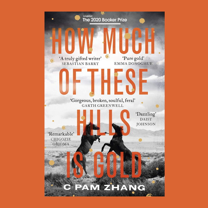 BOOK REVIEW: C PAM ZHANG – HOW MUCH OF THESE HILLS IS GOLD.